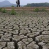 Les causes du réchauffement climatique