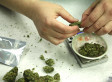 America's War on Drugs Sputters to an End | neutopia | Scoop.it