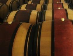 Fine Wine — Futures shock | Vitabella Wine Daily Gossip | Scoop.it