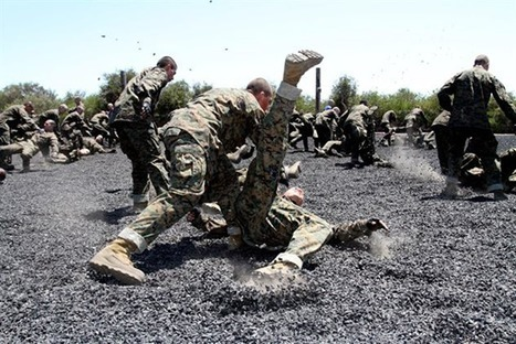 How to break your fall in combat situations to minimize injury and quickly maintain fighting advantage | Brian's Science and Technology | Scoop.it