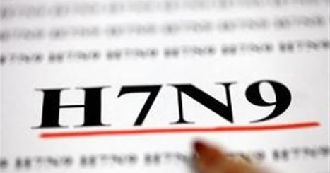 China reports 7 new H7N9 cases | Avian influenza virus A(H7N9) | Scoop.it
