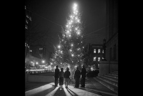 Untangling the History of Christmas Lights | Homework Helpers | Scoop.it