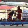 watch Live Boxing