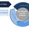 Talent Lifecycle Management