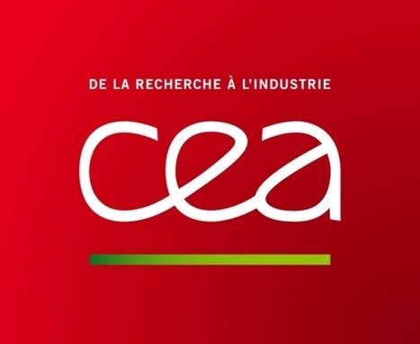 Le CEA dans le top 100 mondial des acteurs de l'innovation pour la 6è année consécutive | Pierre BREESE | Scoop.it