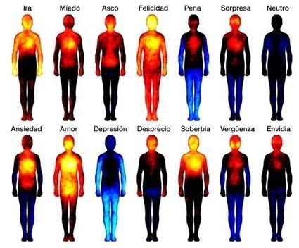 Estas son las partes del cuerpo en las que se sienten las emociones   Microsiervos (Ciencia)   Psicopedagogía   Scoop.it