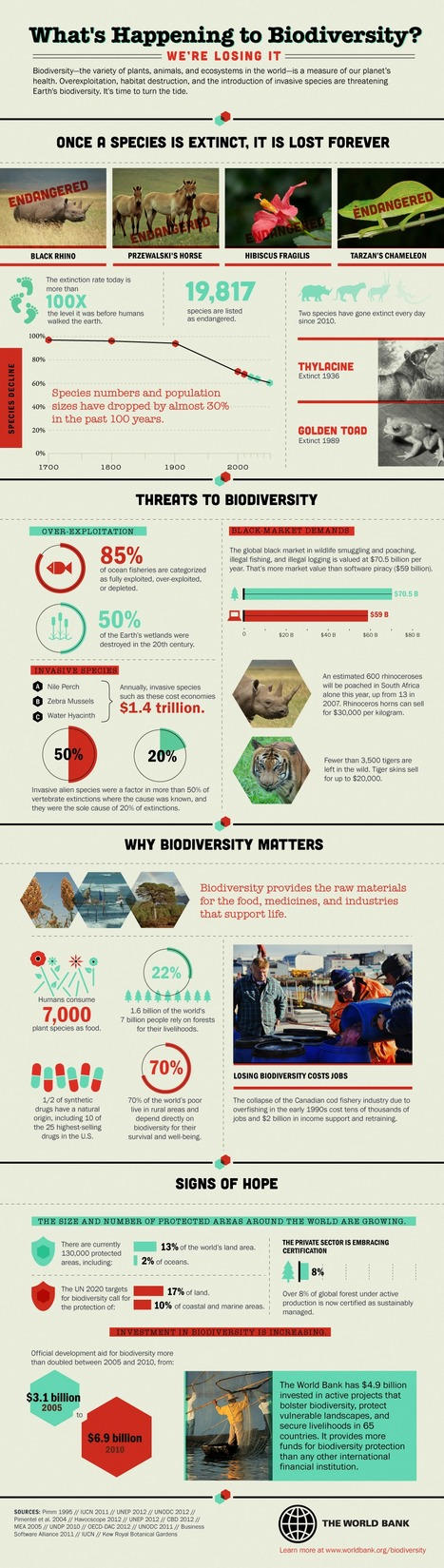 What's Happening to Biodiversity? [infographic] | following geography education | Scoop.it