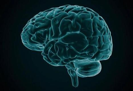 Imaging Technique Could Help Traumatic Brain Injury Patients | ucsf.edu | Social Neuroscience Advances | Scoop.it