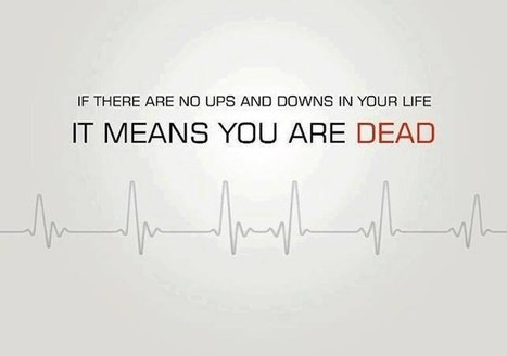 If There Are No Ups And Downs In Your Life It M