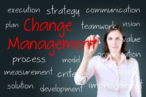 Do you need a transformation management office? | Strategies for Managing Your Business | Scoop.it