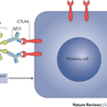 Immunology and Biotherapies