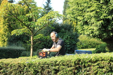 Les jardiniers municipaux à l'écoute du parc Barbieux à Roubaix - La Voix du Nord | Pesticides et biocides | Scoop.it