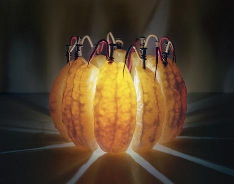 Portakaldan LED'li Lamba | Haylaz Teknoloji Ürünleri | Scoop.it