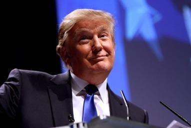 Fake Trump Tweet | metrobodilypassages | Scoop.it