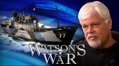 W5 - Modern pirate seeks to protect world's sea life | CTV News | Indigo Scuba | Scoop.it