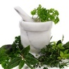 Natural Poultice of Hernias