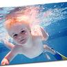 Transparencia - natación, water polo, clavado, deportes acuáticos