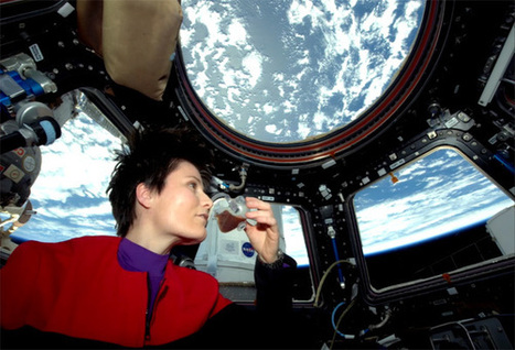 Comparing Fiction and Fact: An Astronaut Talks About Life on the Space Station   Space matters   Scoop.it