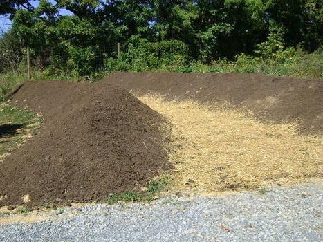 How to Build and Plant Large Hugelkultur Berms | Eco Village | Scoop.it