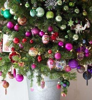 Christmas color blocking | Dirt Du Jour | Grown Green Gardens | Scoop.it