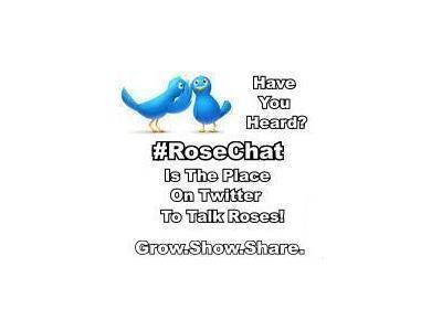 Rose Chat Radio | Helen Yoest | Gardening With Confidence | Annie Haven | Haven Brand | Scoop.it