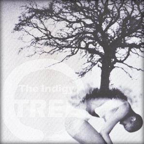 TREE - The Indigy Band   The Indigy Band   Scoop.it