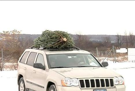Recycling tips after the holidays - CNYcentral.com | Green RVing | Scoop.it