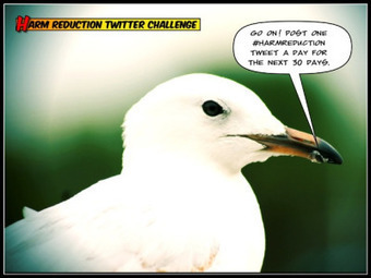 30 Day Harm Reduction Twitter Challenge   Harm Reduction   Scoop.it
