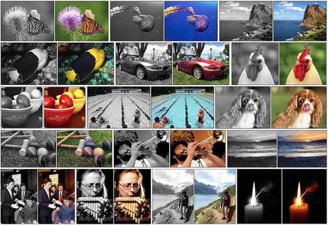 Photoshop of the Future May Be Able to Auto-Colorize a B&W Photo   xposing world of Photography & Design   Scoop.it