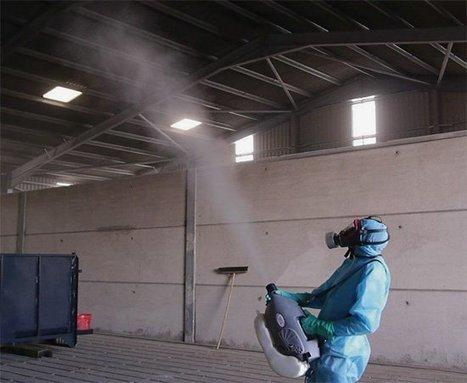 helmint fertőtlenítés vizelet papilloma vírus teszt