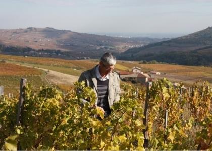 Vindicateur, Bruno Perraud, héros discret du vin naturel   En attendant septembre   Scoop.it
