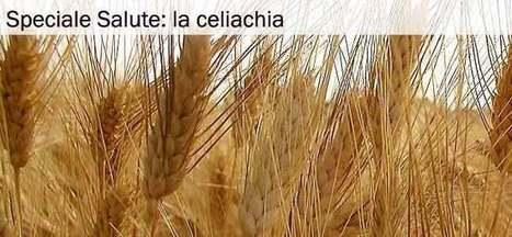 Intolleranza al Glutine: sintomi e cure della celiachia. | Salute, benessere,stare bene | Scoop.it