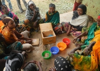 Video/Gallery: Women in Ethiopia working to reduce food insecurity by ... - Ipswich Star | Gender & Protection in East Africa | Scoop.it