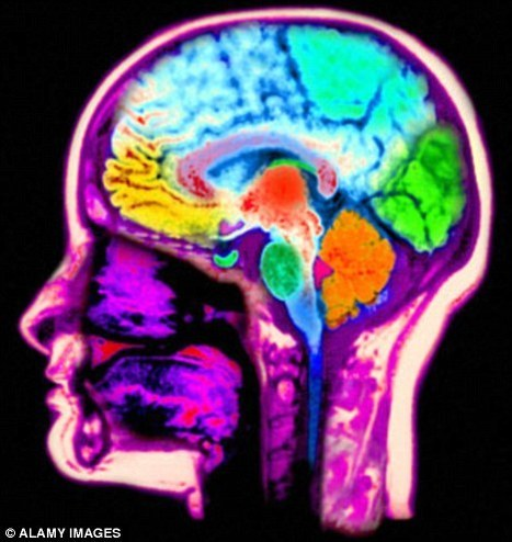 fMRI shows that thought patterns used to recall the past and imagine the future are strikingly similar   Revitalize Your Mind & Life   Scoop.it