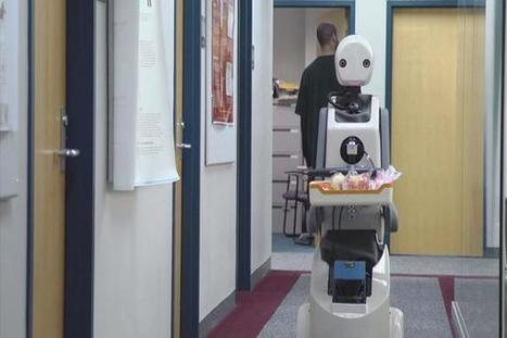 AI will eliminate 6% of jobs in the next five years, says report   Global Brain   Scoop.it