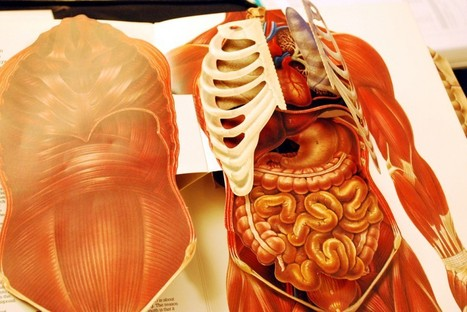 Google takes on the human body to find out what a healthy person looks like   NGSS Resources   Scoop.it