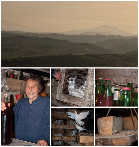 Le Marche | The other Italy ... | Le Marche another Italy | Scoop.it