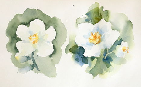 5 Common Watercolor Painting Mistakes | Circolo d'Arti | Scoop.it