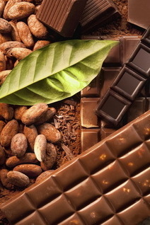 It's Today! Science Cafe: The Science of Chocolate | North Carolina Museum of Natural Sciences | Research from the NC Agricultural Research Service | Scoop.it