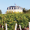 Bordeaux Wines Weekly