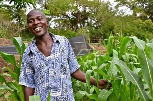 Is climate-smart and digital agriculture the silver bullet to attract youth?