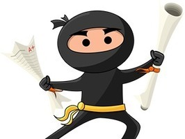 write a ninja essay