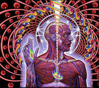 Ten Impressive Psychology Studies from 2011 | I want your brains | Scoop.it