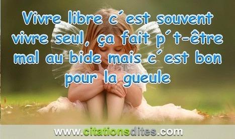 Citations Dites Amour Vivre Libre C Est