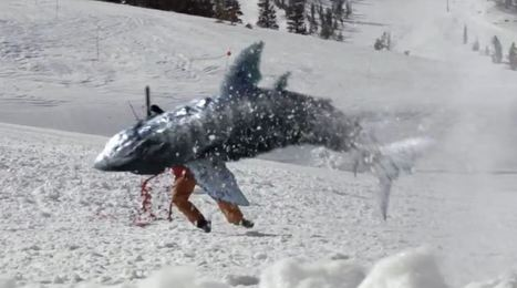 SyFy follows up Sharknado with Avalanche Sharks trailer | All about water, the oceans, environmental issues | Scoop.it