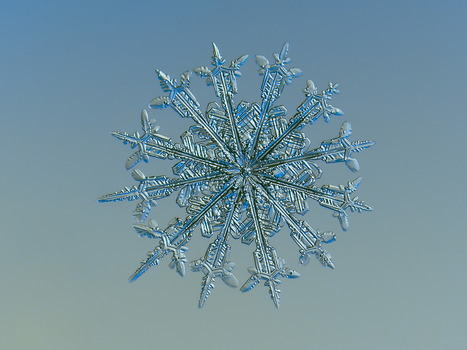 Freshly Fallen Snowflakes Make for Stunning Close-Up Photos | The Creators Project | e.cloud | Scoop.it