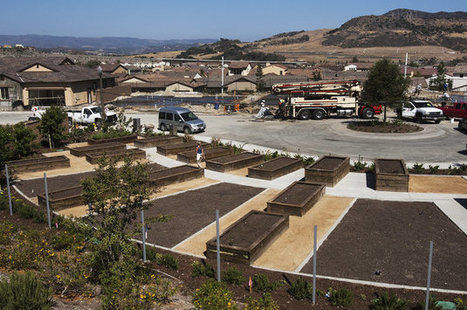 'Agrihoods' Offer Suburban Living Built Around Community Farms, Not Golf Courses | Renew Cities: Environmental Sustainability | Scoop.it