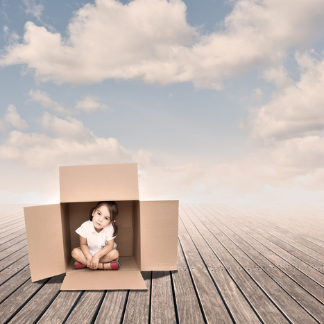 The Boxes We Grow Up In: identity, development and the prefrontal cortex | The Good Mental Health Planner | Scoop.it