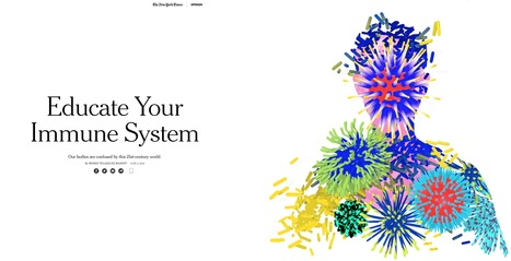 Educate Your Immune System: Our bodies are confused by this 21st-century world | Immunology for University Students | Scoop.it
