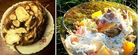 Sellerieknolle - rustikal, vielseitig & figurfreundlich  - Ernährungsblog   Web-Ernaehrung   Scoop.it